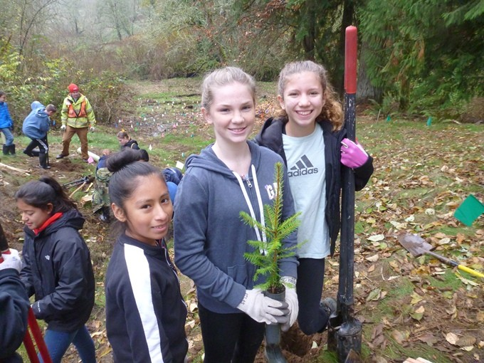 Tree Planting Opportunities for Your Class or Green Team!