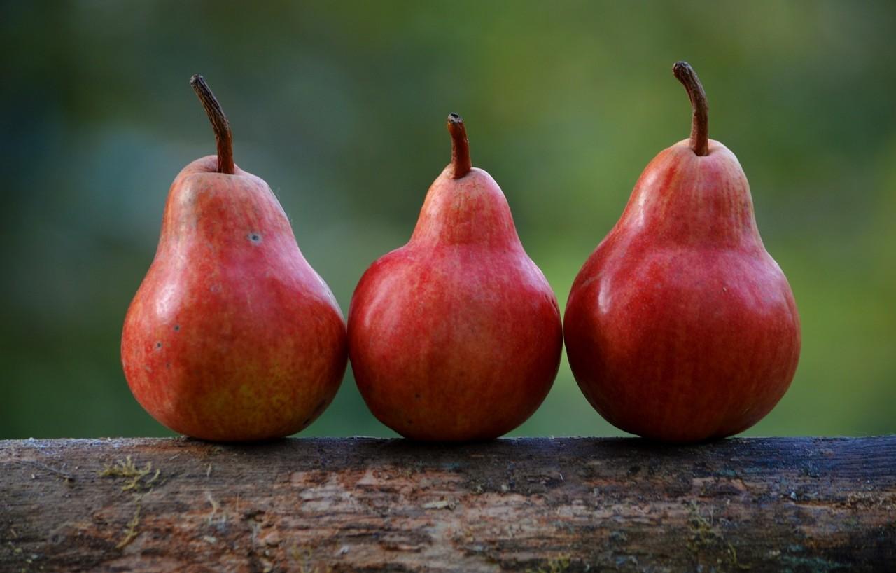 pears-1209915_1920
