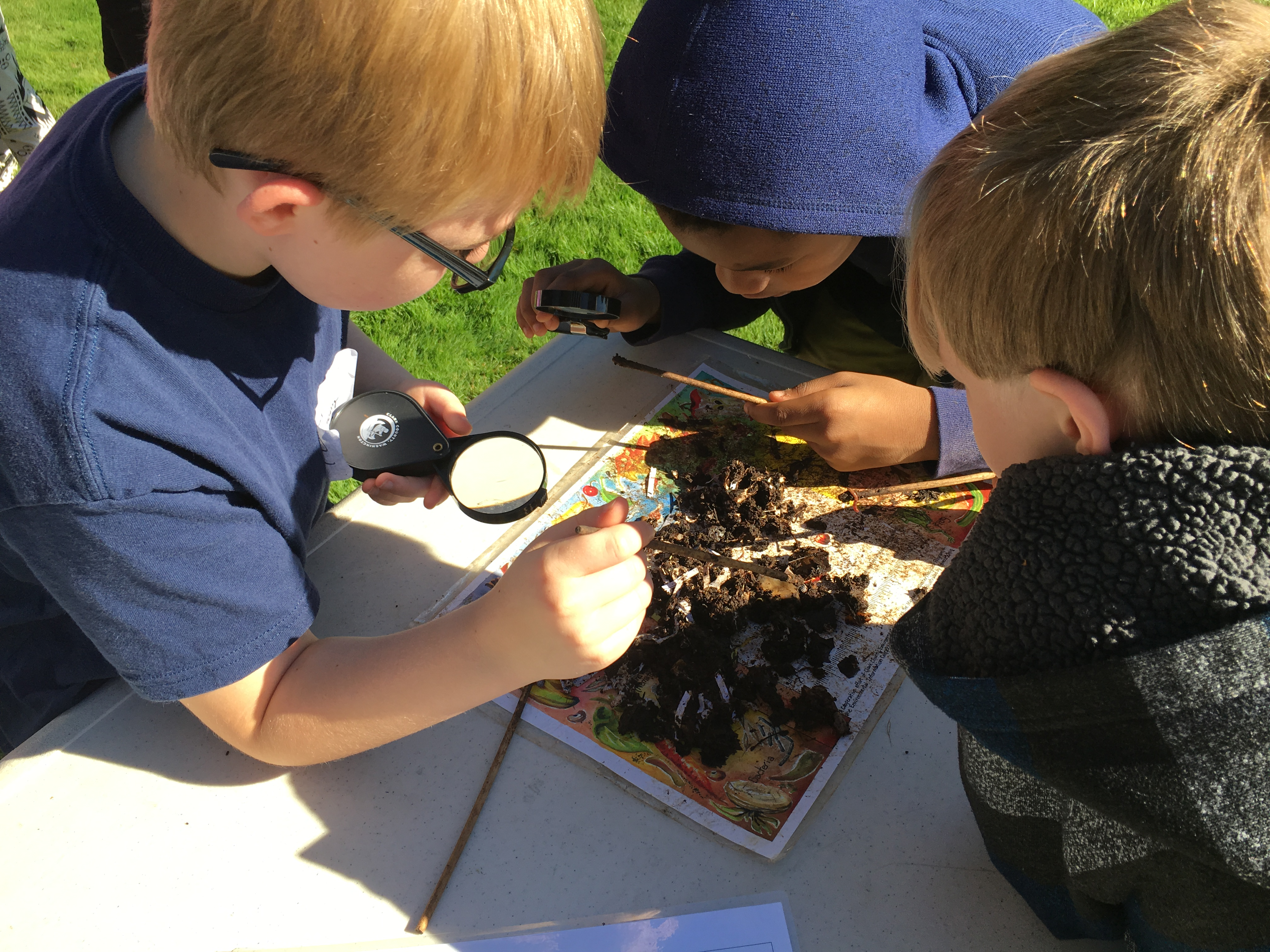 Compost and Decomposers (Gr. 2–3)