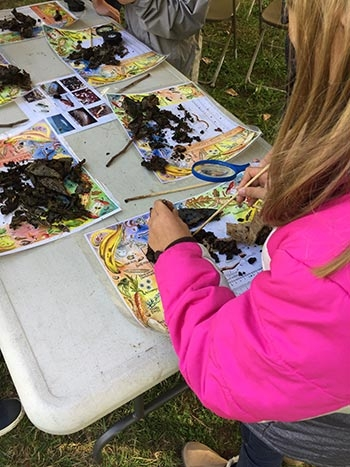 Students learn about composting